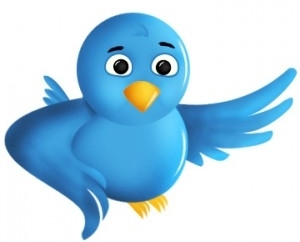 Comment utiliser Twitter ?
